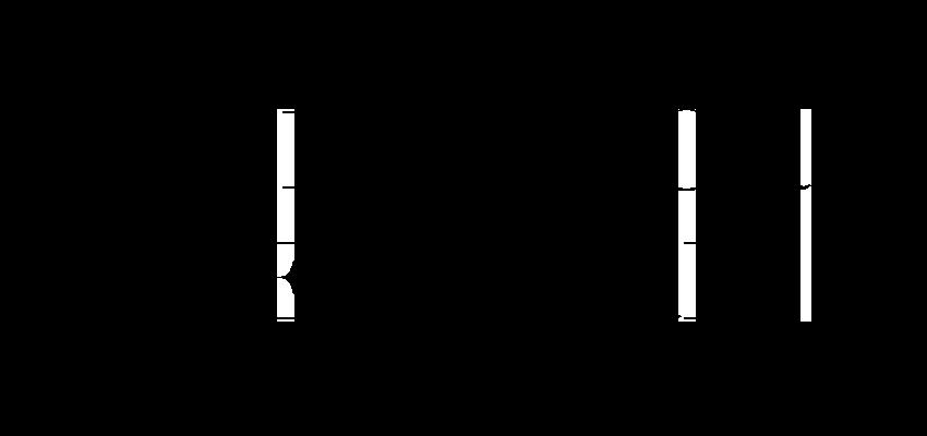 The Junior Network Logo smaller